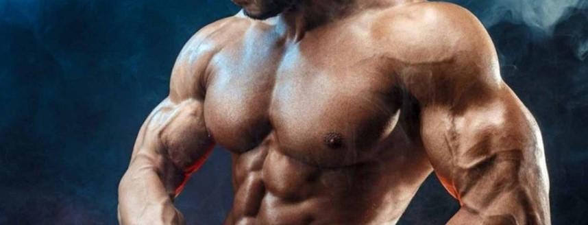 Зачем нужен Ибутаморен? Рост мышц